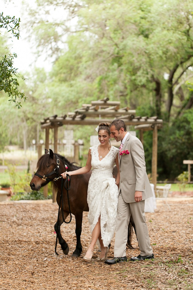 Bumby Photography, Harmony Gardens, A Chair Affair, Horse Wedding