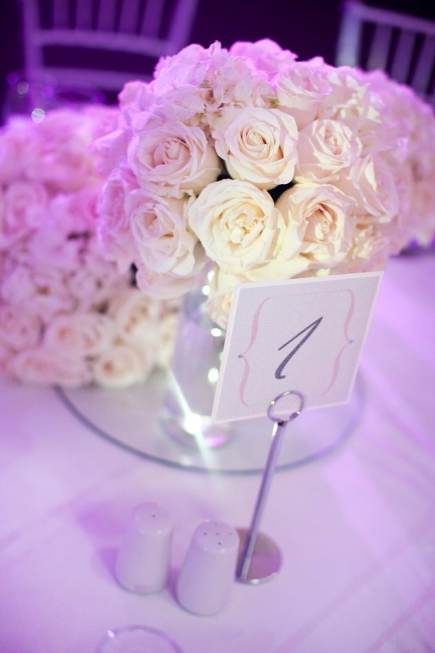 Sara Kauss Photography, Dogwood Blossom Stationery, Orlando weddings, table number