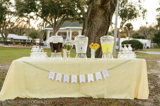 Dogwood Blossom Stationery, Bumby Photography, Ocoee Lakeshore Center, Drink Station